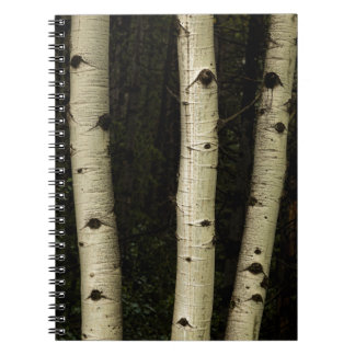 Three Pillars Of The Forest Notebook