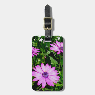 Three Pink Daisy Flowers Luggage Tag