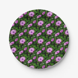 Three Pink Daisy Flowers Paper Plate