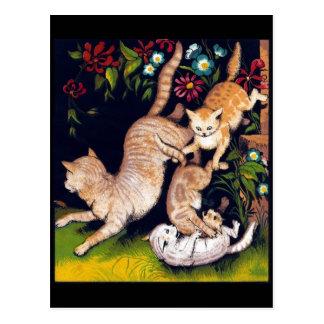 Three Playful Cats Postcard