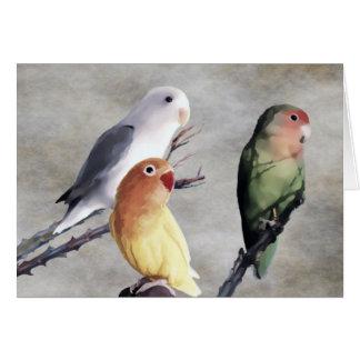 Three Pretty Lovebirds Card