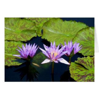 Three Purple Water Lilies Greeting Card