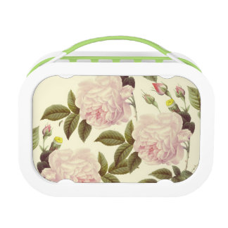 Three Rose Cream Lunch Box