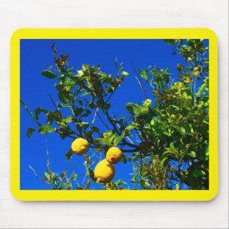 Three Sicilian Lemons Mouse Pad