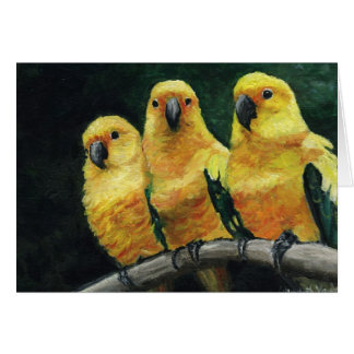 """Three Sun Conures"" Bird Art  Greeting Card"