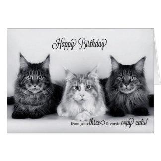 Three Tabby Cat Triple Play Birthday Card