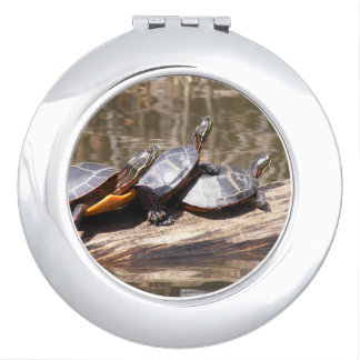 Three Turtles Sitting On A Log Compact Mirror