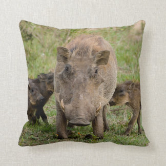Three Warthog Piglets Suckle On Their Mother Throw Cushions