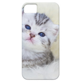 Three weeks old young cat sitting on sheep fur barely there iPhone 5 case