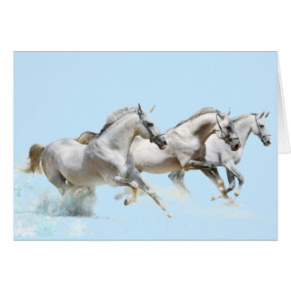 THREE WHITE HORSES IN SNOW CARD