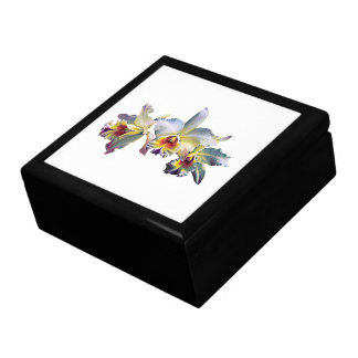 Three White Orchids Large Square Gift Box