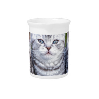Three young silver tabby cats in checkered basket beverage pitchers