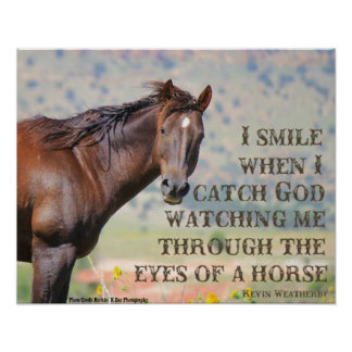 Through the Eyes of a Horse Poster