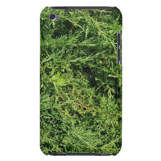 Thuja tree photo background iPod touch cover