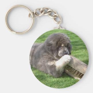 Tibetan Mastiff Jampo with broom keychain