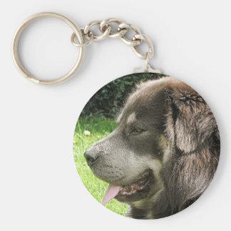 tibetan mastiff.png key ring