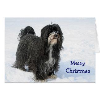 Tibetan Terrier dog in snow custom Christmas Card