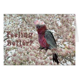 Tickled Pink Card