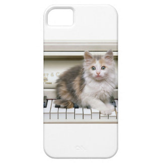 Tickling The Ivorys Kitten Barely There iPhone 5 Case