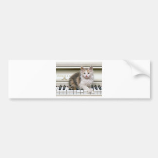 Tickling The Ivorys Kitten Bumper Sticker