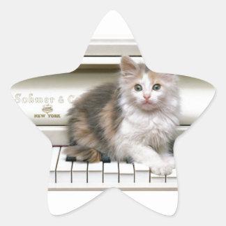 Tickling The Ivorys Kitten Star Sticker