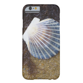Tidal Pool Barely There iPhone 6 Case