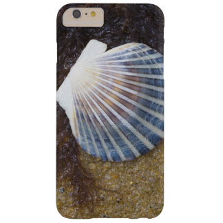 Tidal Pool Barely There iPhone 6 Plus Case