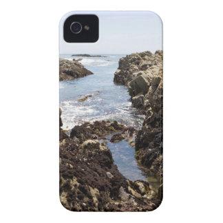 Tide Pool iPhone 4 Case