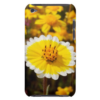 Tidy Tip Wildflowers iPod Touch Cases