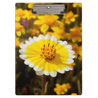 Tidy Tip Wildflowers Clipboards
