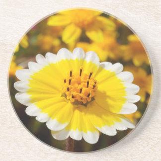 Tidy Tip Wildflowers Drink Coasters