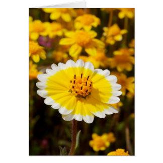 Tidy Tip Wildflowers Greeting Card