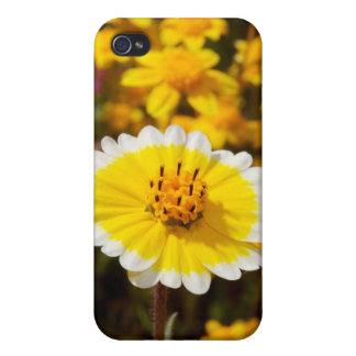Tidy Tip Wildflowers iPhone 4/4S Case