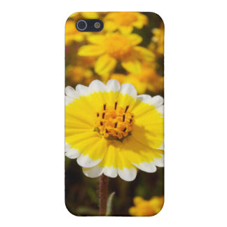 Tidy Tip Wildflowers iPhone 5/5S Cases