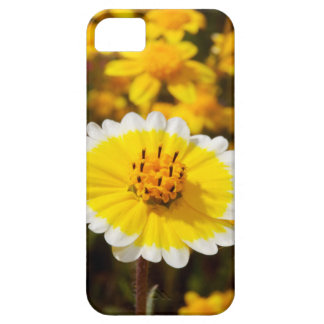 Tidy Tip Wildflowers iPhone 5 Covers