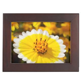 Tidy Tip Wildflowers Memory Box