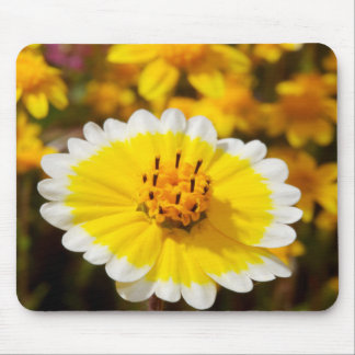 Tidy Tip Wildflowers Mouse Pad