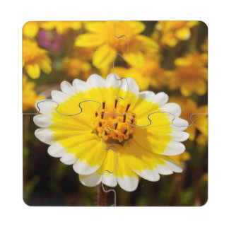 Tidy Tip Wildflowers Puzzle Coaster