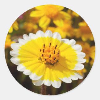 Tidy Tip Wildflowers Round Sticker