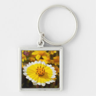 Tidy Tip Wildflowers Silver-Colored Square Key Ring