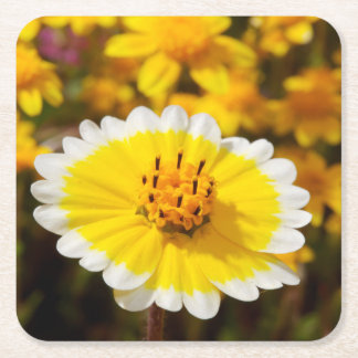 Tidy Tip Wildflowers Square Paper Coaster