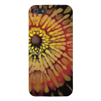 Tie Dye Gold and Red iPhone 5 Covers