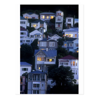 Tiered houses Oriental Bay Wellington Postcard