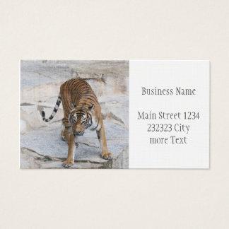 Tiger 1216 AJ Business Card