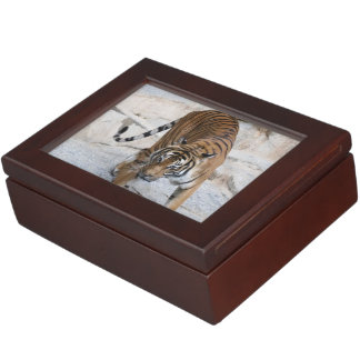 Tiger 1216 AJ Keepsake Box