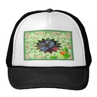 tiger-1-st-patricks-0023 hat