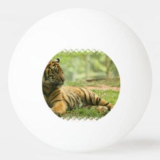 tiger-28 ping pong ball