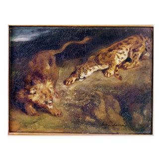 Tiger and Lion Postcard
