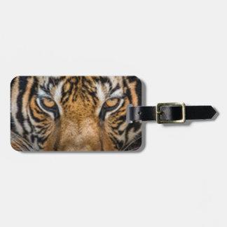 Tiger Animal Print Luggage Tag