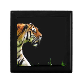 Tiger Approaching - Wild Animal Artwork Gift Box